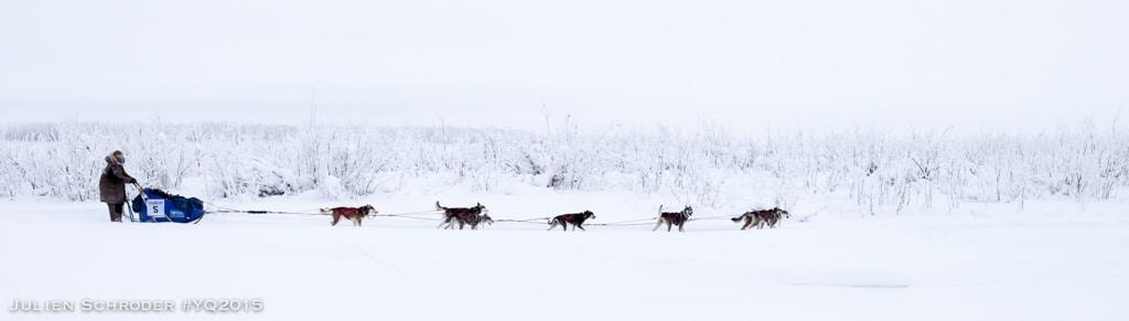Nicolas Vanier l'aventure du Yukon Quest